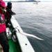 【6代目タチウオキング吉田昇平が語る】大阪湾タチウオキングバトル2018ファイナルを制したワザとは!?